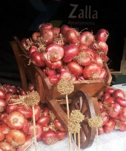 Cebolla morada de Zalla. Bizkaia